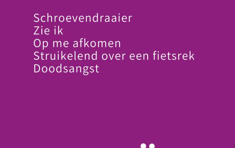 Schroevendraaier