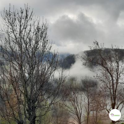 Een regenachtige dag: Lucky Basterd